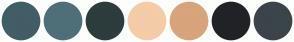 Color Scheme with #425D66 #4F6F78 #2D3C3C #F4CCA8 #D8A47B #212226 #3B444B