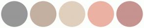 Color Scheme with #979797 #C3B0A0 #E0CFBC #EBB2A4 #C69390