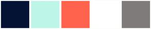 Color Scheme with #041234 #BDF6E9 #FF634D #FFFFFF #807B7B