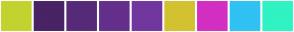 Color Scheme with #C2D32F #492366 #572A79 #64308C #72379F #D3C22F #D32FC2 #2FC2F3 #2FF3C2