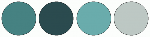 Color Scheme with #468282 #2B4B4F #6AACAC #BDC8C4