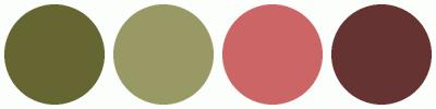 ColorCombo1501
