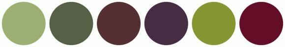 ColorCombo1504