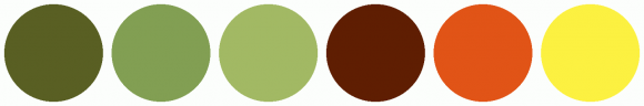 ColorCombo1509