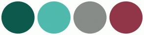 Color Scheme with #0D5A4D #4FBAAD #878C88 #913649