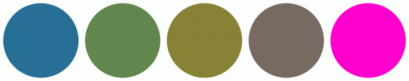 ColorCombo1557