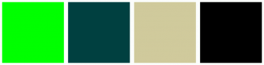 Color Scheme with #00FF00 #004040 #D0CA9C #000000