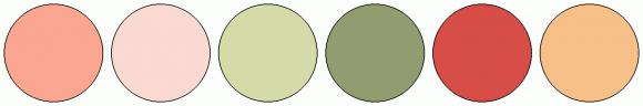 ColorCombo1684