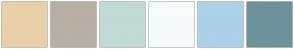 Color Scheme with #E8D0A9 #B7AFA3 #C1DAD6 #F5FAFA #ACD1E9 #6D929B