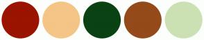 Color Scheme with #9A1400 #F4C586 #0A4213 #944A19 #CBE1B4