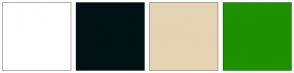 Color Scheme with #FFFFFF #001213 #E4D4B3 #1D9100