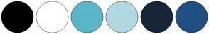 Color Scheme with #000000 #FFFFFF #5AB6C9 #B2D8E1 #162638 #205081