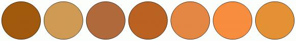 ColorCombo1862