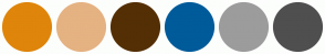 Color Scheme with #DF850B #E5B282 #542F05 #005B9A #9C9C9C #4F4F4F