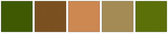ColorCombo1905