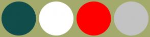 Color Scheme with #114D4A #FFFFFF #FF0000 #C3C3C3