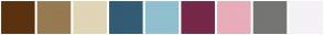 Color Scheme with #5B3210 #977A51 #E0D6B5 #325C75 #90C0CF #752849 #E8ADB9 #757573 #F4F2F5