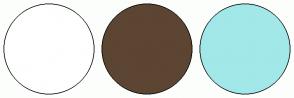 Color Scheme with #FFFFFF #5C4532 #A2E8E8