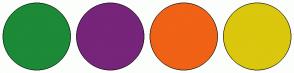Color Scheme with #1C8A37 #76257A #F06216 #DBC70D