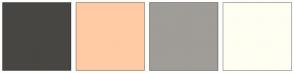 Color Scheme with #474643 #FFCBA4 #A09C97 #FFFEF2