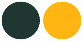 Color Scheme with #203731 #FFB612