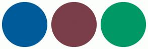 Color Scheme with #005B9A #7A3E48 #009966