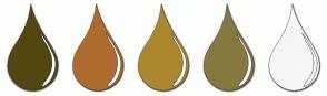 Color Scheme with #524711 #AF6B2E #AC872E #85793F #F5F5F5