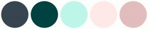 Color Scheme with #36454F #004242 #BDF6E9 #FFE9E8 #E1BDBD