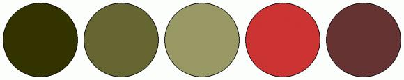 ColorCombo2348
