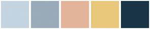 Color Scheme with #C4D4E0 #9AABB9 #E2B49A #E9C77B #193446