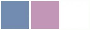 Color Scheme with #728CB0 #C296B6 #FFFFFF
