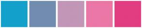 Color Scheme with #13A1CB #728CB0 #C296B6 #EB77A6 #E23D80