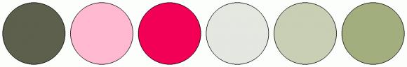 ColorCombo2420