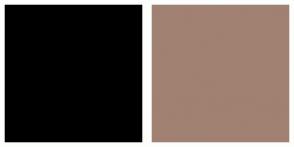 Color Scheme with #000000 #A18172