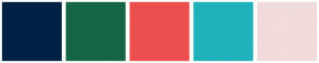 Color Scheme with #022044 #156546 #ED4E4E #20B1BB #F1DBDB