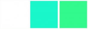 Color Scheme with #FFFFFF #19F7CB #32FA8C