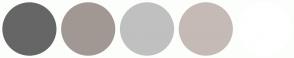 Color Scheme with #666666 #A19893 #C0C0C0 #C5BAB5 #FFFFFF