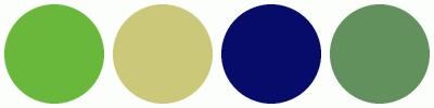 ColorCombo2551