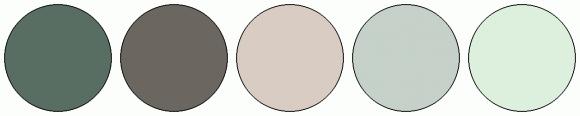 ColorCombo2585