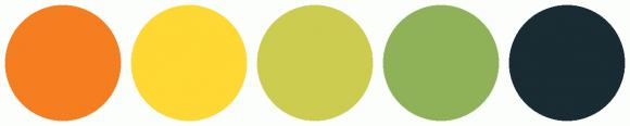 ColorCombo12319