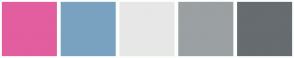 Color Scheme with #E25E9F #79A2C1 #E7E7E7 #9BA0A3 #666C70