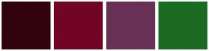 Color Scheme with #31030D #720426 #693056 #1C6B22