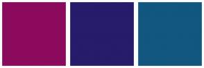 Color Scheme with #8C0A5D #271B6B #11577F