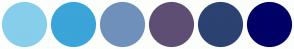 Color Scheme with #87CEEB #3BA4D9 #7090BC #5E4E73 #2C4271 #000066