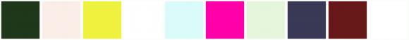 ColorCombo13016
