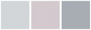 Color Scheme with #D2D6D9 #D3C9CE #A8ADB4