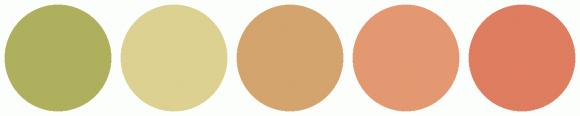 ColorCombo13229