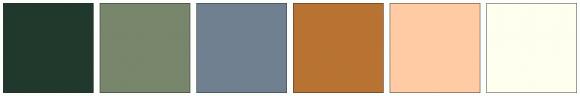 ColorCombo13667
