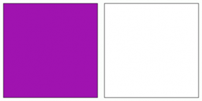 Color Scheme with #A013B0 #FFFFFF