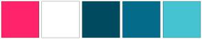 Color Scheme with #FF236B #FFFFFF #004A5F #046C8A #45C3D0